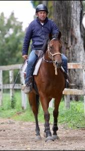 Tony Churchill riding a confident young breaker